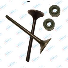 Клапан впускной, клапан выпускной, маслосъемные колпачки (набор) | 163 FML-2M / 163 FML-2